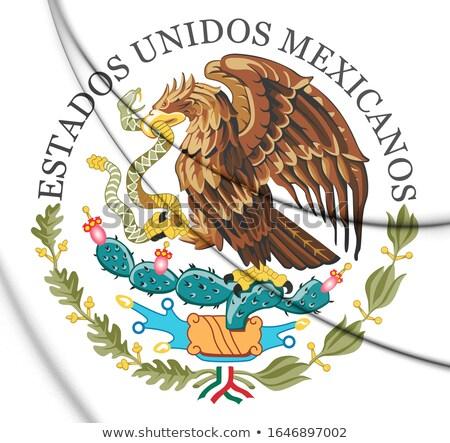 Meksika · kuzey · Amerika · haritaları · haritacılık - stok fotoğraf © Vectorminator