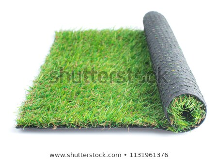 Herbe artificielle vert blanche herbe jardin Photo stock © 808isgreat