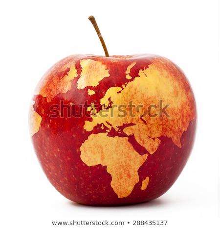 Fruits of Earth Stock photo © Alvinge