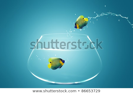 angelfish jumping out of  fishbowl Stock photo © designsstock