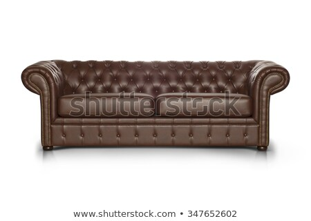 brown leather sofa on white background Stock photo © Victoria_Andreas