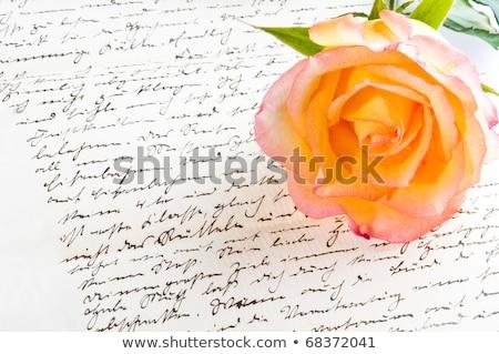 kırmızı · gül · el · yazılı · mektup · sevmek · gül - stok fotoğraf © 3523studio