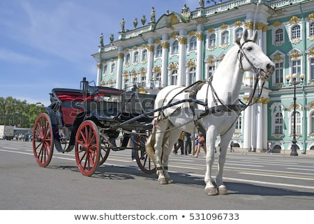Stock photo: Carriage With Horses In The Background Of The Hermitage