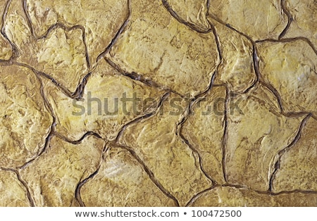 grunge colorfull exposed concrete wall texture stock photo © H2O