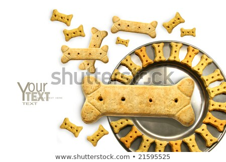 Pile of doggy biscuits with pewter dish on white  Stock photo © Sandralise