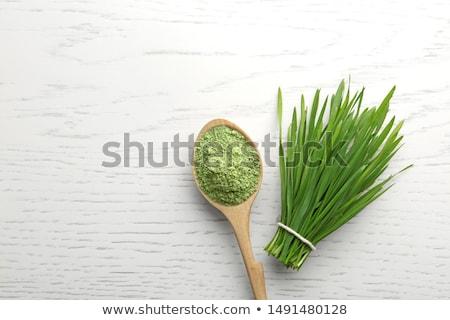 árpa fű zöld közelkép háttér növény Stock fotó © dutourdumonde