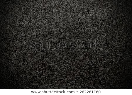 siyah · deri · kanepe · beyaz · iç · mimari · sahne - stok fotoğraf © shutswis
