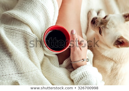 brunette woman in bed sunday morning stock photo © juniart