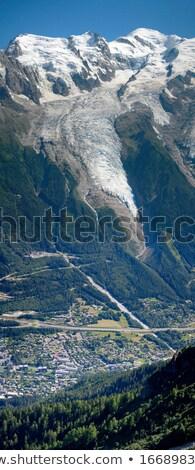 Gleccser Franciaország kilátás híres gyönyörű időjárás Stock fotó © Elenarts