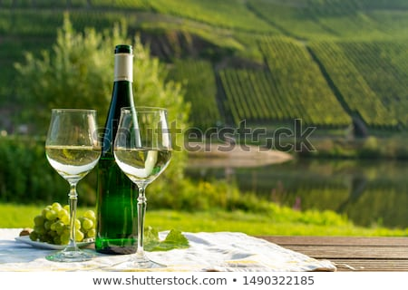 Stock photo: vineyard (riesling), Germany