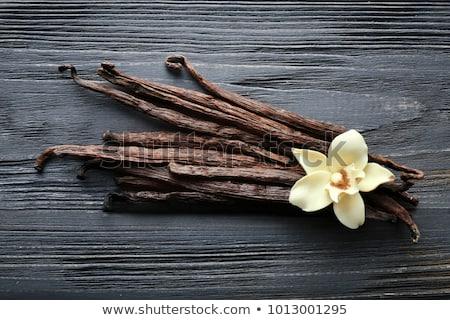 Tempero baunilha temperos essencial cultura Foto stock © jarp17