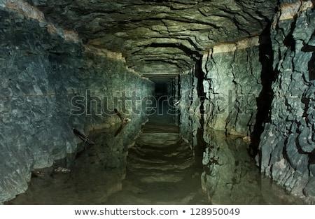 First world war tunnel Stock photo © Antonio-S