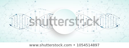 Cromossoma digital abstrato ciência microscópio humanismo Foto stock © 4designersart