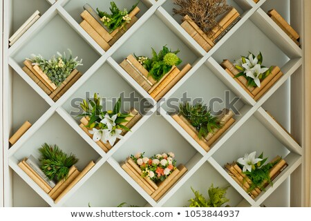 Stock photo: Spring flowers and books