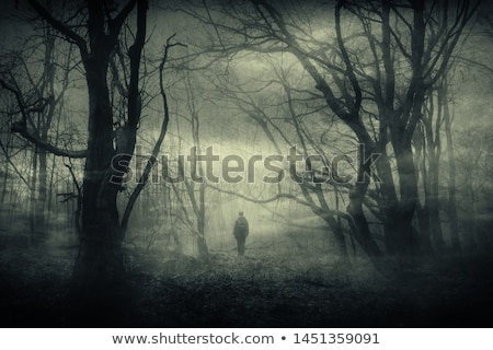 Eerie Mist Stock photo © bradleyvdw