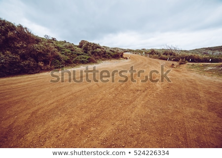 ストックフォト: 未舗装の道路 · を実行して · 茂み · 土地 · 道路 · 青