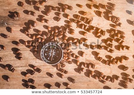 コーヒー豆 コンパス 開いた本 キャンバス テクスチャ ヴィンテージ ストックフォト © stevanovicigor