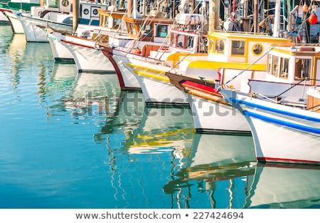 fehér · vitorlázik · tenger · idilli · nyáridő · díszlet - stock fotó © hanusst