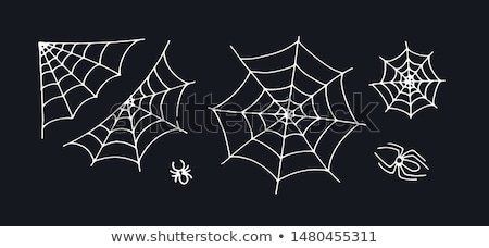 spiders web elements black and white design vector card stock photo © essl