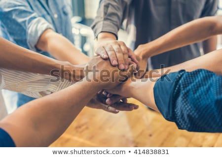 Equipe acordo parceiros de negócios dois grupos árvores Foto stock © Lightsource