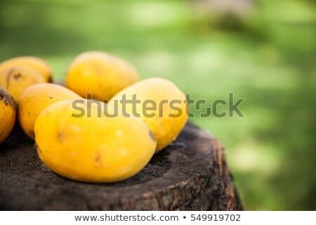 mangó · fa · közelkép · kilátás · levél · gyümölcs - stock fotó © juniart