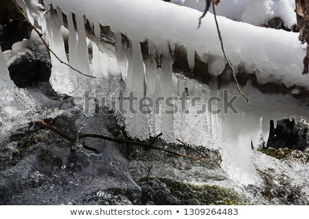 Icicles Above a Rushing Stream Stock photo © wildnerdpix