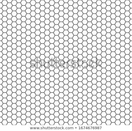 Méhsejt végtelen minta vektor zöld szín terv Stock fotó © aliaksandra