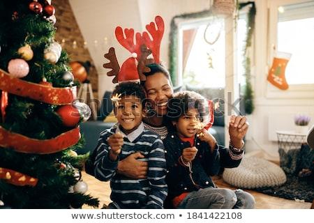 Ren geyiği aile Noel örnek kar komik Stok fotoğraf © adrenalina