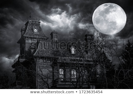 effrayant · manoir · détaillée · illustration · colline · maison - photo stock © exile7