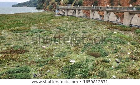 Hoover · Dam · água · verão · azul · rocha · indústria - foto stock © intsys