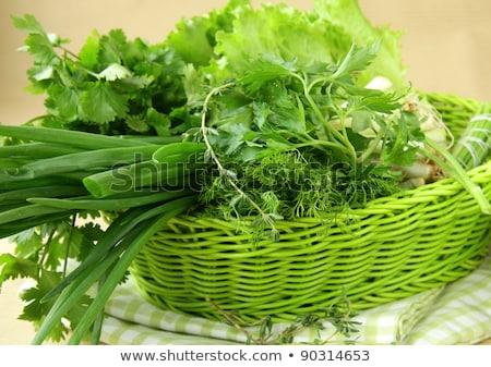 fraîches · herbe · verte · persil · oignon · herbes - photo stock © ozaiachin