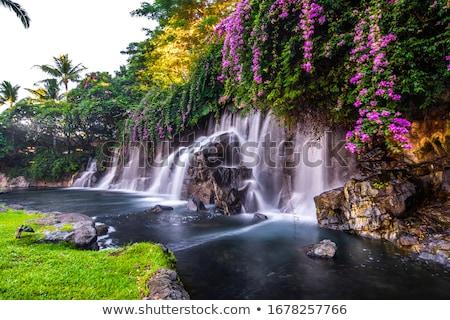 водопада экране пейзаж Компьютерный монитор компьютер Сток-фото © tilo