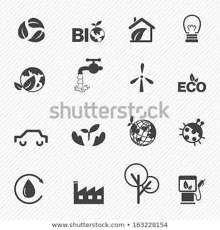 Healthy Environment Symbol Stock photo © Lightsource