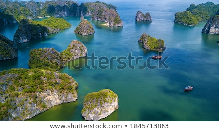 Lan marinha paisagem Vietnã ver gato Foto stock © smithore