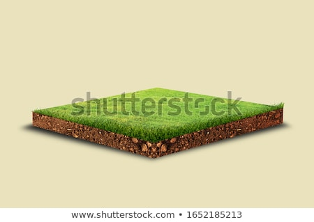 Stock photo: green earth concept in isometric view