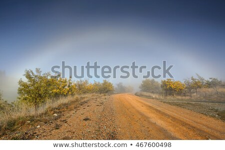 Fog Bow nature phenomenon in outback Australia Stock photo © lovleah