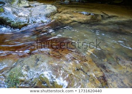 Folyó víz fenék folyam piros kövek Stock fotó © lunamarina