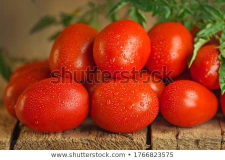 vers · roma · tomaten · miniatuur · peterselie · witte - stockfoto © feverpitch