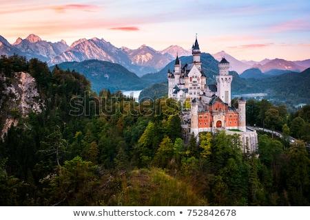 ノイシュヴァンシュタイン城 · アルプス山脈 · ドイツ · 森林 · 山 · 夏 - ストックフォト © andreykr