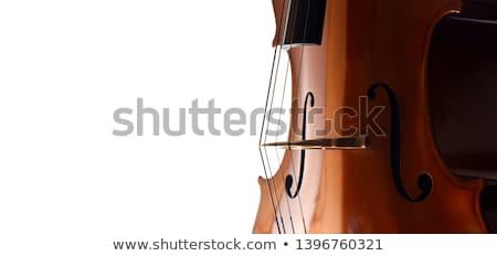 チェロ クローズアップ バイオリン 音楽 背景 芸術 ストックフォト © FreeProd