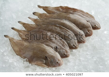 Stock photo: Sole fish on ice at a market