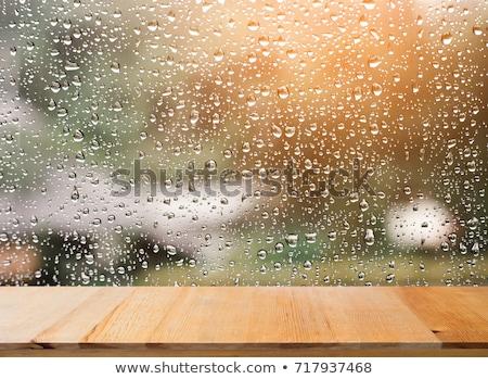 Esik az eső ablak néz ki nedves mélabús Stock fotó © morrbyte