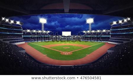 beysbol · lig · spor · vektör · sanat · örnek - stok fotoğraf © vector1st