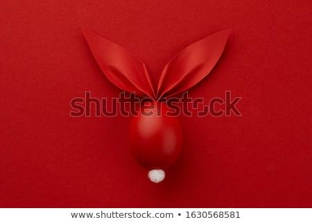 Пасхальный заяц красный дизайна Сток-фото © Wetzkaz