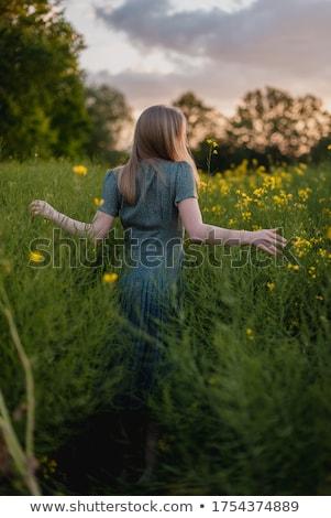 Campesino nina campos ilustración granja Foto stock © adrenalina