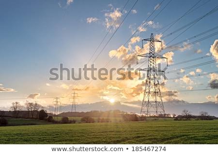 field of pylon sunset stock photo © rufous