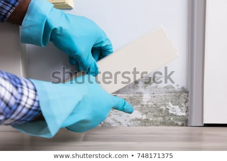 Person Hand Testing The Moldy Wall Stock photo © AndreyPopov