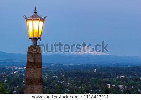 Rocky Butte Viewpoint with Mount Hood during Evening Blue Hour Stock photo © davidgn