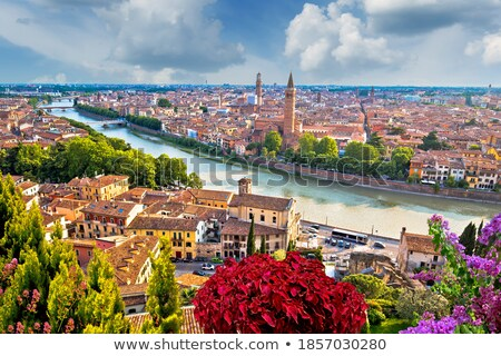 verona towers and rooftops evening view stock photo © xbrchx