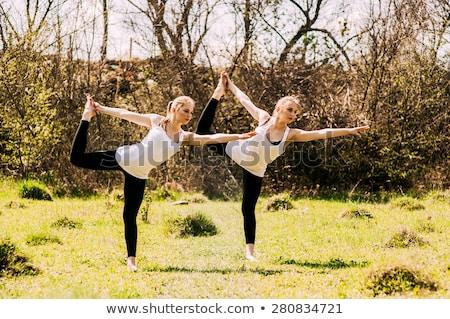 Geschikt tweelingen zusters poseren samen aantrekkelijk Stockfoto © NeonShot